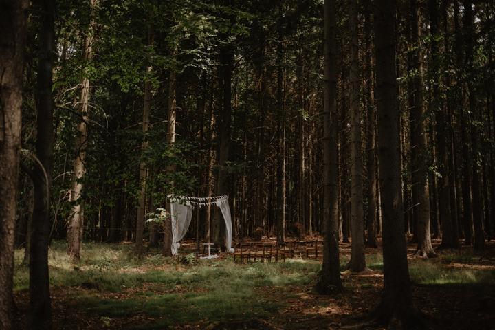 svatební obřad v lese